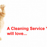 Go For The Eco-friendly and Non-toxic House Cleaning Company